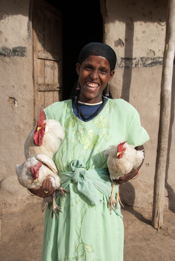 Rearing chickens has made a real difference to Regina's life, boosting her family's income for the long term.