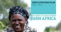 Kenya strategic plan 2014-2016