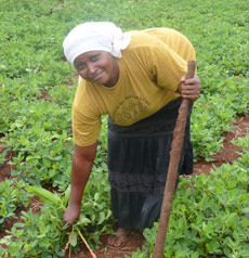Joyce tending her field of beans