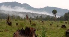 Making conservation profitable
