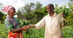 Three ways partnerships can fight rural poverty