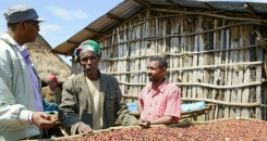 Why coffee is life in Ethiopia