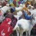 Trustees visit Ethiopia women's project