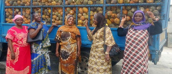Pineapple farmers double profits in Tanzania