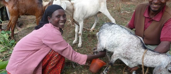 Working with women in Ethiopia to end poor nutrition