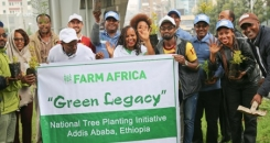 How lasting will Ethiopia's Green Legacy be?