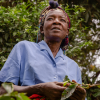 Farm Africa's Coffee is Life appeal raises more than £300,000
