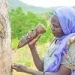 Making business scents: how incense harvesting is protecting an Ethiopian forest