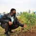 Farm Africa proud to support Ethiopia's 2020 Green Legacy Campaign