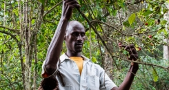 Turning back the tide of deforestation in Ethiopia