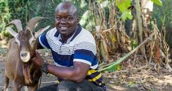 Goat Power: Q&A with Dr Emmanuel Egaru