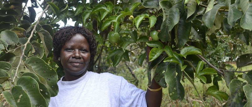 Faith Mumo standing under one of her passion fruit trees in Kwale county, Kenya.