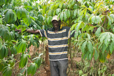 Nguuzi with his flourishing crops.