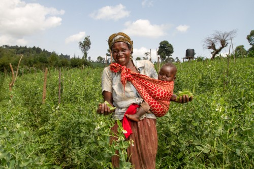 Emily Bowen of Kiptoror Christian Development Youth Group in the groups's snow peas farm in Tugumo Village, Trans Nzoia East