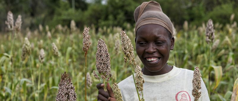 A farmer with her sorghum crop in Kenya