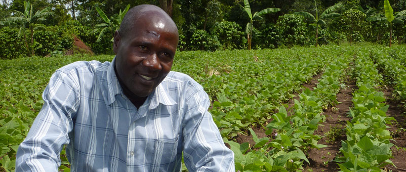 Baale George, a community seed farmer who produces disease-resistant bean seeds for sale in his community.