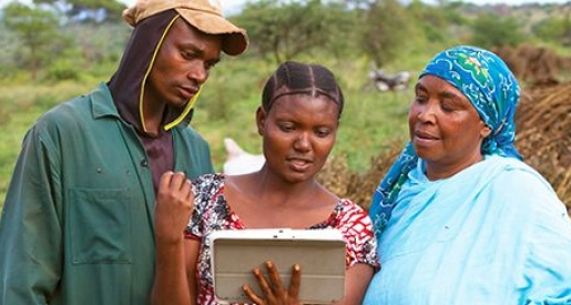 Postcard from… Tanzania: Mobile technology brings training to the homes of 500 sesame farmers