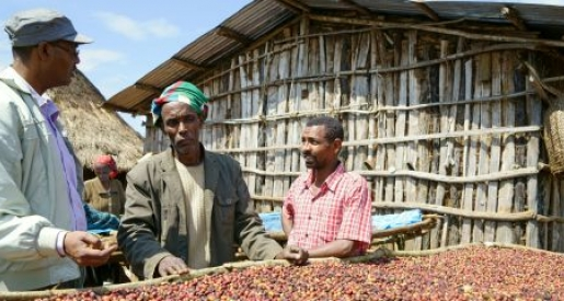 Postcard from Ethiopia: why coffee is life for millions of smallholder farmers
