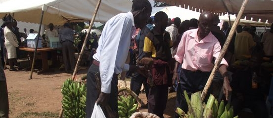 Postcard from Uganda: Farmers making the most of Expo opportunities